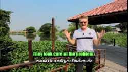 แก้ปัญหา ผักตบชวา วัชพืช ปุ๋ย ภาษาอังกฤษว่าอย่างไร ? #เที่ยวไปเรียนรู้ไป